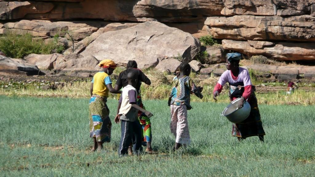 Mali - Novembre 2008_ 0146