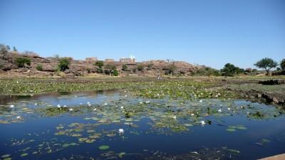 Mali - Novembre 2008_ 0150